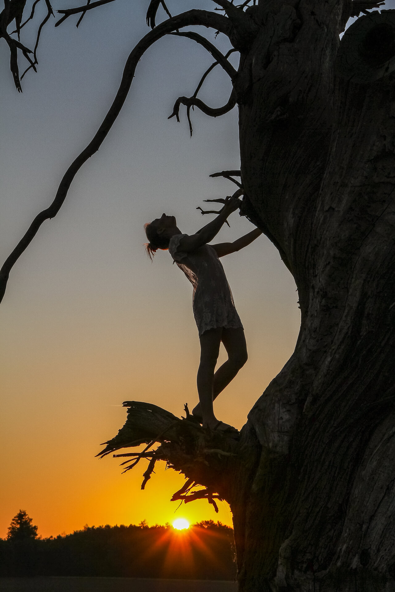 A coloured image of a beautiful sun rise showing Liz (who is all but in silhouette) stood on the snapped off branch of a dead tree (also nearly in silhouette) as the sun rises behind her. Liz holds on to the main trunk whist wearing a very flimpsy see through negligee type dress under which she is naked.
