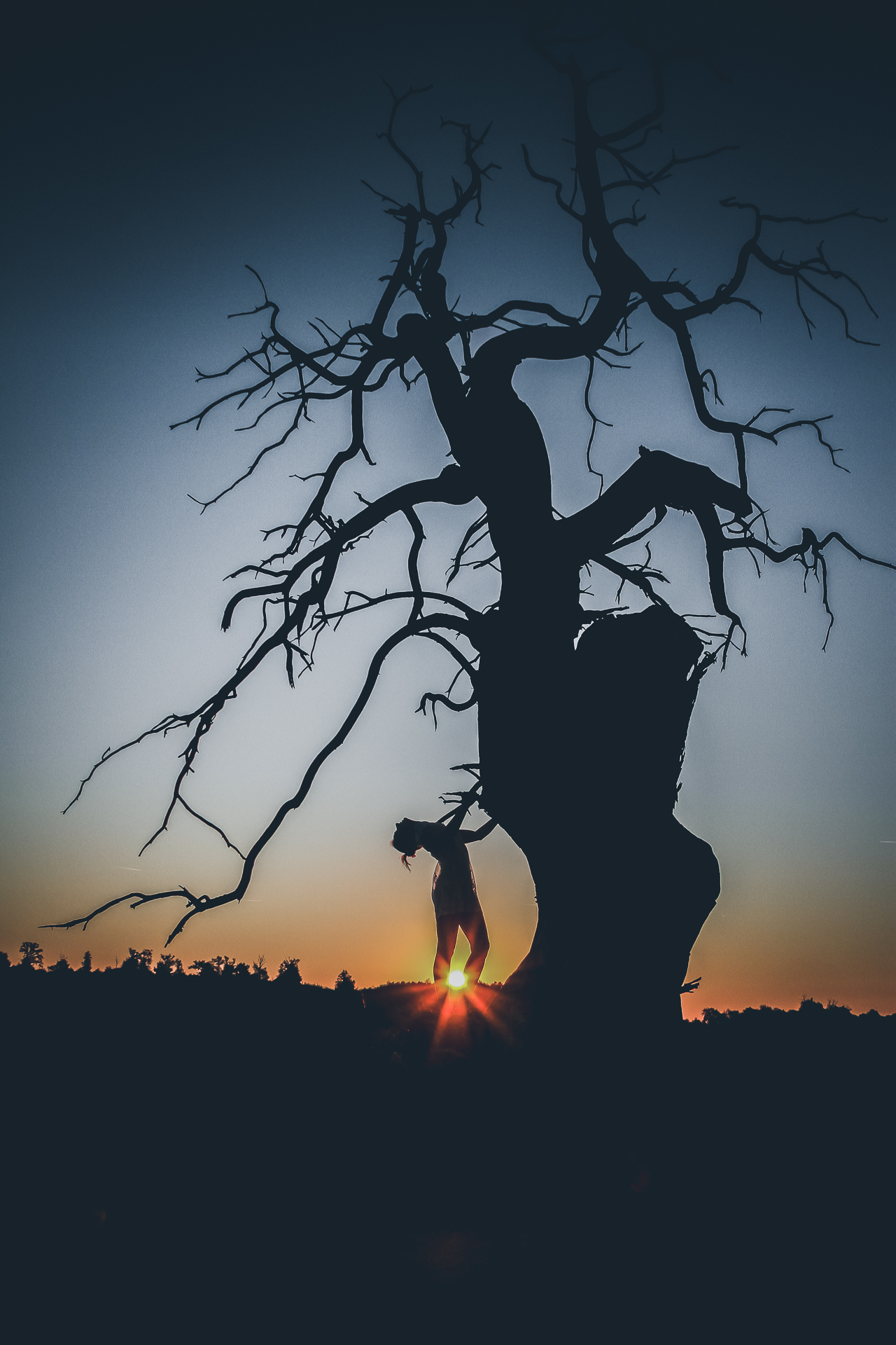 A coloured image of a sunrise which portrays Liz (who is in silhouette) stood, back arched and head right back, next to a long dead tree (also seen in silhouette). The sun rises on the horizon behind her which, as she is stood. appears to be from between her lower legs. Although difficult to see Liz is naked, save a flimpsy see through negligee type dress.