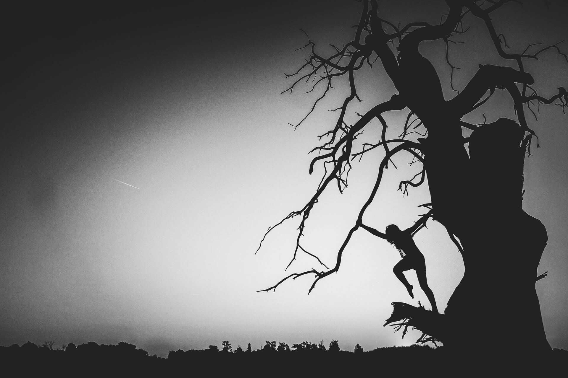 A black and white image taken at sun rise showing Liz (who is completely in silhouette, as is the large tree she is in) stood on the snapped off branch of a long dead tree, dawn has broken and the sun is just about to rise behind her. Liz, both arms outstretched holds on to a small branch with her right hand whilst she stands on a broken branch (of significant size), her left hand is holding the main tree trunk. She leans away from the tree, her body in a perfect straight line, head to foot. Her right leg is lifted and her knee is bent at 90 degrees.