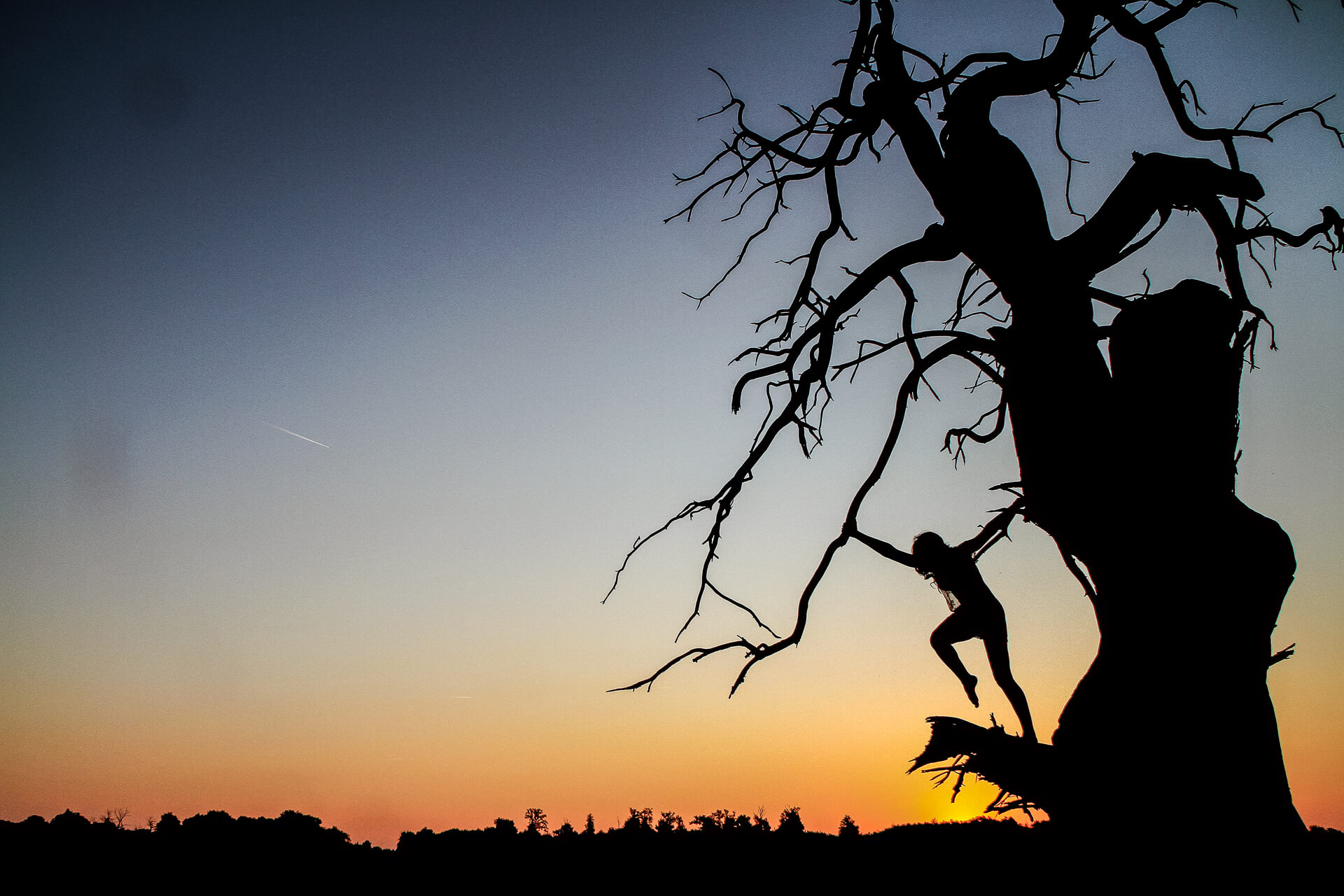 A coloured image of a beautiful sun rise showing Liz (who is completely in silhouette, as is the large tree she is in) stood on the snapped off branch of a long dead tree, the sun rises behind her. Liz, both arms outstretched holds on to a small branch with her right hand whilst she stands on a broken branch (of significant size), her left hand is holding the main tree trunk. She leans away from the tree, her body in a perfect straight line, head to foot. Her right leg is lifted and her knee is bent at 90 degrees.