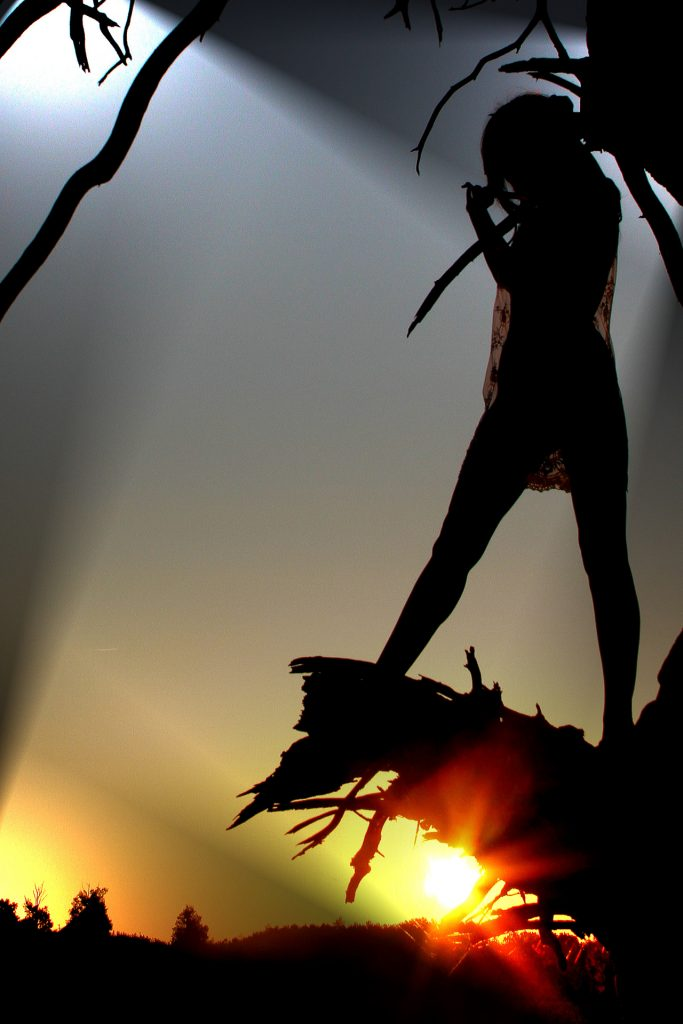 A coloured image of a sun rise showing Liz (who is in silhouette) stood on the snapped off branch of a dead tree (also in silhouette) as the sun rises behind her. Liz is naked, save a flimpsy see through negligee type dress.