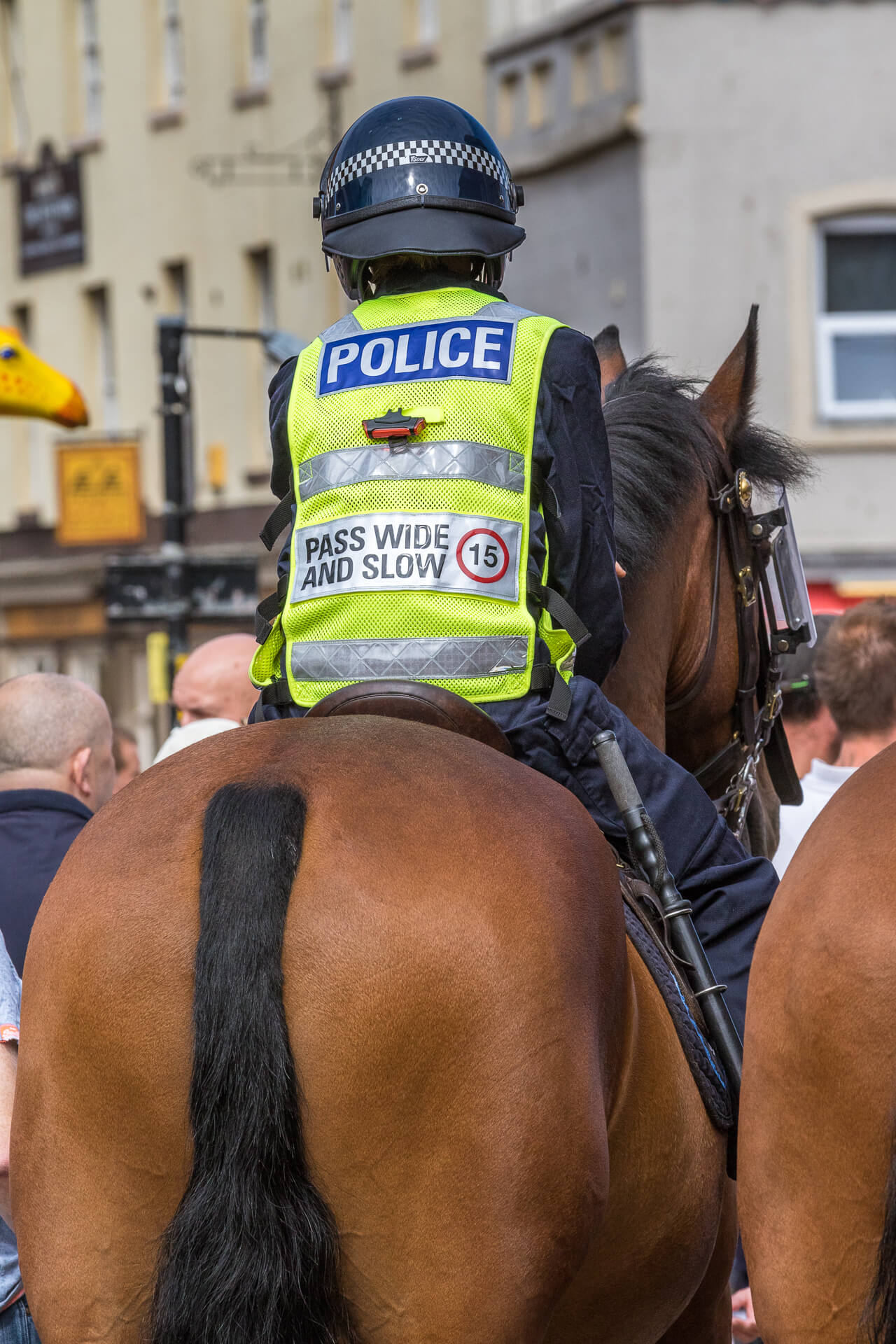 A rear view of a chestnut coloured Police Horse and its Rider seen policing the BNP Marches in Worcester in 2019. Atop her mount the female officer wears a Hi Viz vest with POLICE written on it, attached to it is a small flashing red bicycle type light, and underneath the light are the words, PASS WIDE AND SLOW with a 15mph limit symbol.